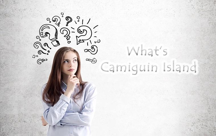 カミギン島とは